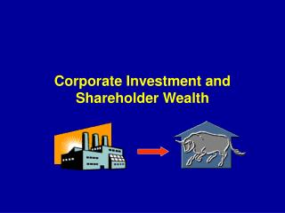 Corporate Investment and Shareholder Wealth