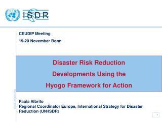 Disaster Risk Reduction  Developments Using the  Hyogo Framework for Action
