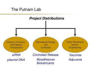 The Putnam Lab