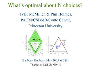 What's optimal about N choices?