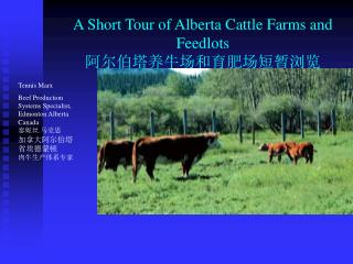 A Short Tour of Alberta Cattle Farms and Feedlots  阿尔伯塔养牛场和育肥场短暂浏览