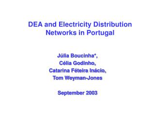 DEA and Electricity Distribution Networks in Portugal