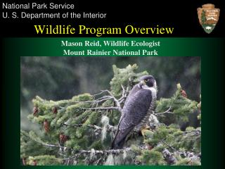 Wildlife Program Overview