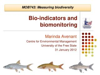 Bio-indicators and biomonitoring