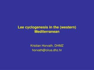 Lee cyclogenesis in the (western) Mediterranean