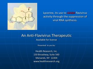 Lycorine, its use to  inhibit  flavivirus activity through the suppression of viral RNA synthesis.