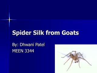 Spider Silk  from Goats
