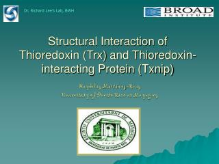 Structural Interaction of Thioredoxin (Trx) and Thioredoxin-interacting Protein (Txnip)