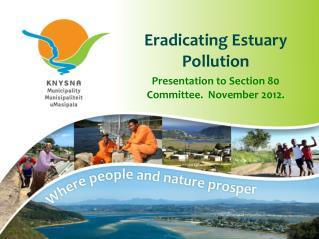 Estuary Pollution Item Final Presentation Section 80 Nov2012
