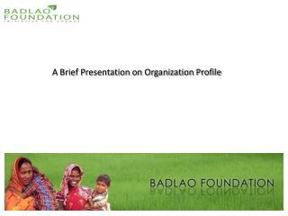 A Brief Presentation on Organization Profile