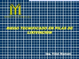 Ing. Vidal Mamani