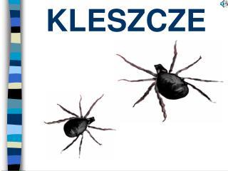 KLESZCZE