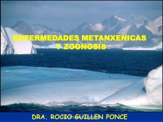 DRA. ROCIO GUILLEN PONCE