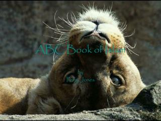 ABC Book of Islam
