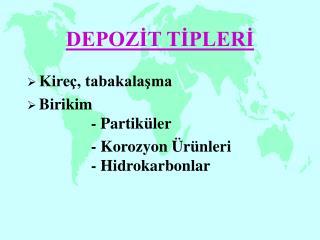 DEPOZİT TİPLERİ