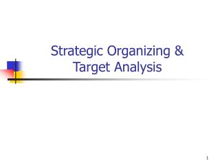 Strategic Organizing & Target Analysis