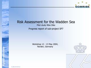 Risk Assessment for the Wadden Sea Pilot study Ribe Dike Progress report of sub-project SP7