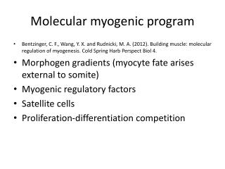 Molecular myogenic program