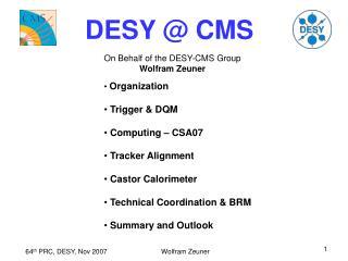 DESY @ CMS