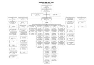HONG KONG AIR CADET CORPS Organisation Chart as at 1.1.11
