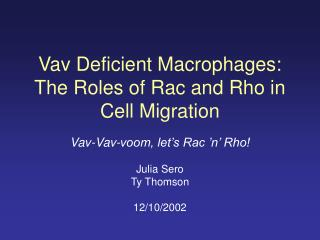 Vav Deficient Macrophages: The Roles of Rac and Rho in Cell Migration