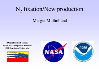 N 2  fixation/New production