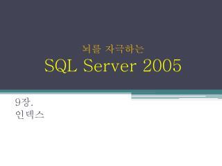 뇌를 자극하는  SQL Server 2005