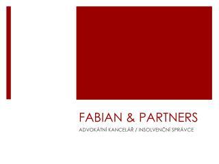 FABIAN & PARTNERS