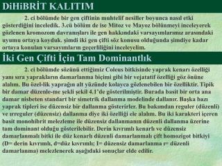 DiHiBRİT KALITIM
