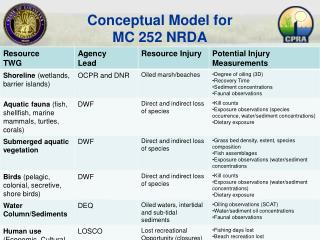 Conceptual Model for  MC 252 NRDA