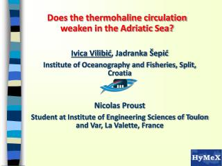 Does the thermohaline circulation weaken in the Adriatic Sea?