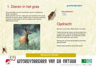 graslandproject