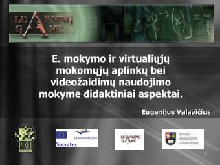 E. mokymo ir virtualiųjų mokomųjų aplinkų bei videožaidimų naudojimo mokyme didaktiniai aspektai.