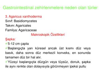 Gastrointestinal zehirlenmelere neden olan t�rler