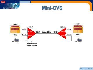 Mini-CVS