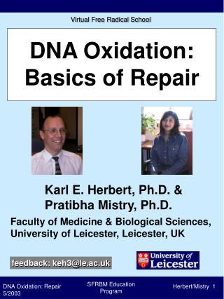 DNA Oxidation: Basics of Repair