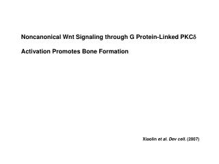 Noncanonical Wnt Signaling through G Protein-Linked PKC d  Activation Promotes Bone Formation