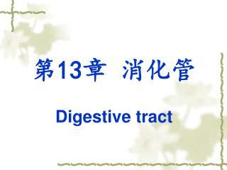 第 13 章 消化管 Digestive tract