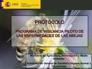 PROTOCOLO PROGRAMA DE VIGILANCIA PILOTO DE LAS ENFERMEDADES DE LAS ABEJAS