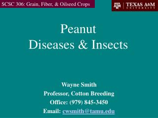 Peanut Diseases & Insects