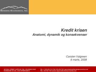 Kredit krisen Anatomi, dynamik og konsekvenser