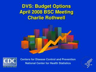 DVS: Budget Options April 2008 BSC Meeting Charlie Rothwell