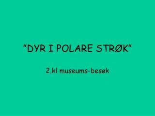 """""""DYR I POLARE STRØK"""""""