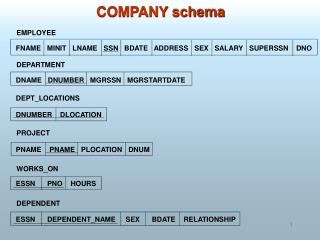 COMPANY schema