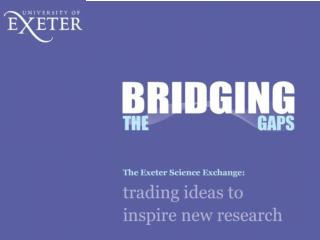 End of First Year Review Professor David Butler Principal Investigator, Bridging the Gaps
