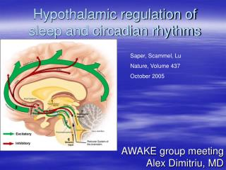Hypothalamic regulation of sleep and circadian rhythms
