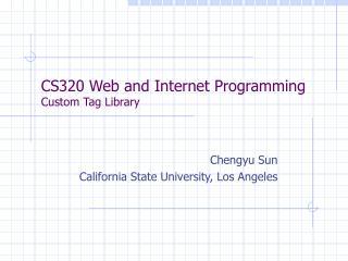 CS320 Web and Internet Programming Custom Tag Library