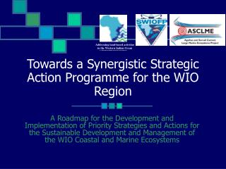 Towards a Synergistic Strategic Action Programme for the WIO Region