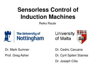 Sensorless Control of Induction Machines
