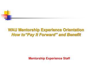Mentorship Experience Staff